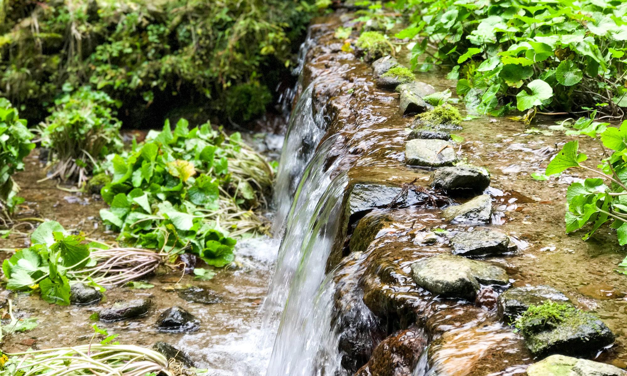湯の関番所 倉吉市関金町を歩く 自然と温泉と体験と